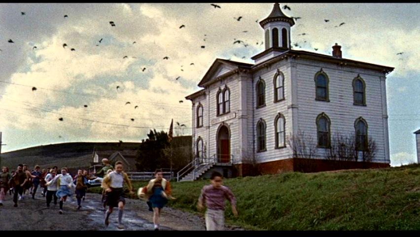 Hitchcock-birds-school
